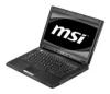 """MSI CX410 (Athlon II M320 2100 Mhz/14""""/1366x768/4096Mb/250Gb/DVD"""