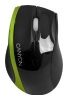 Canyon CNR-MSO01G Black-Green USB